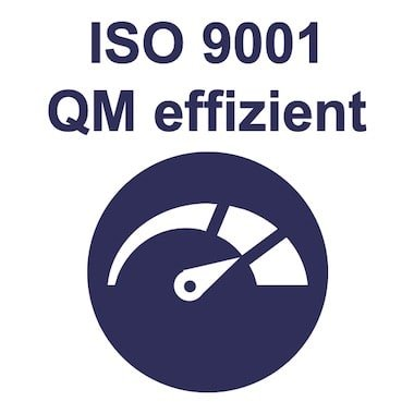 Management Training ISO 9001 effizientes QM